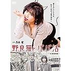 野良猫とパパ活 [DVD]