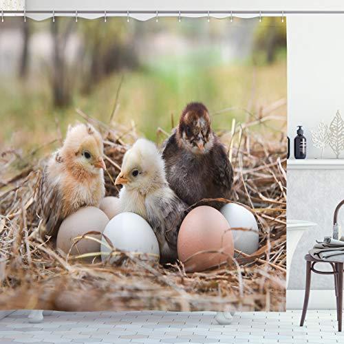 ABAKUHAUS Chicks Douchegordijn, Kleine Kippen in Hay Eieren, stoffen badkamerdecoratieset met haakjes, 175 x 200 cm, Veelkleurig