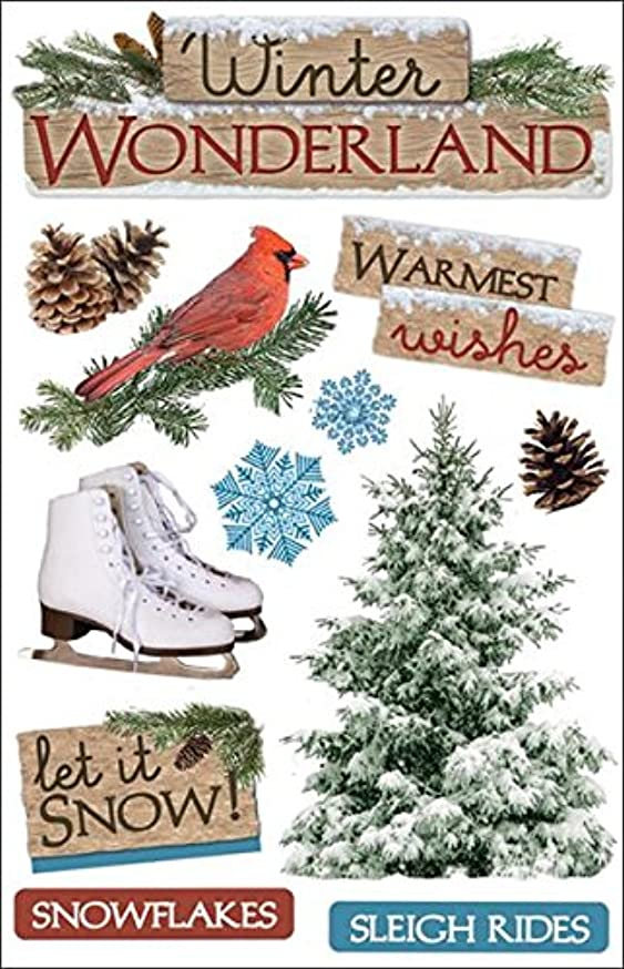 Paper House Productions STDM-0091E 3D Cardstock Stickers, Winter Wonderland (3-Pack)