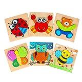 Dreampark 木製パズル モンテッソーリ教育おもちゃ ジグソーパズル6パック 子供のおもちゃ人気 マッチング 形合わせ 7歳以上 カラフル 積み木 出産祝い お誕生日 クリスマスプレゼント 男の子 女の子