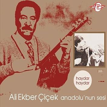 Anadolu'nun Sesi (Haydar Haydar)