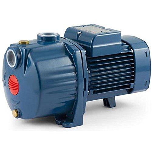 Multi Stage Centrifugal Electric Water Pump 4CPm100-C 1Hp 240V 4CP Pedrollo