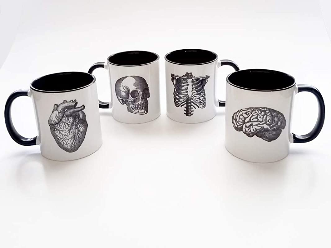 Four Anatomy Coffee Mugs Human Body Anatomical Heart Brain Skull Male Nurse Gift Goth Home Decor