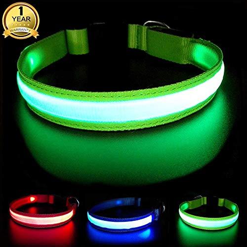 MASBRILL Collar Luminoso Perro de Mascota, 3 Modos Collar Perro Luz con Recargable y Impermeable, Ajustable Collares LED para Perros Pequeños/Medianos/Grandes(Verde M)