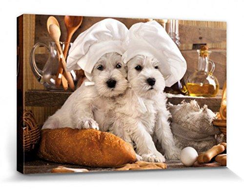 1art1 Hunde - Zwei Zuckersüße Hündchen Bilder Leinwand-Bild Auf Keilrahmen | XXL-Wandbild Poster Kunstdruck Als Leinwandbild 120 x 80 cm