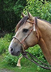 Gebisslos Reiten: Mit dem Bosal pferdefreundlich bis zur höchsten Versammlung 6