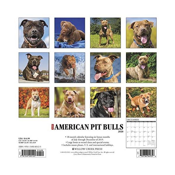 Just American Pit Bull Terriers 2020 Wall Calendar (Dog Breed Calendar) 2