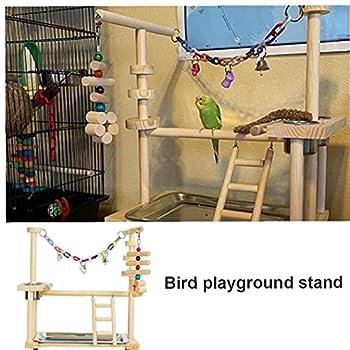 Hainice Oiseaux Aire de Jeu Toy Perroquets Jouer Stand Gym Perruche Jouer Playpen Ladder Balançoire Pet Toy avec des Oiseaux Chew Coupe Feeder