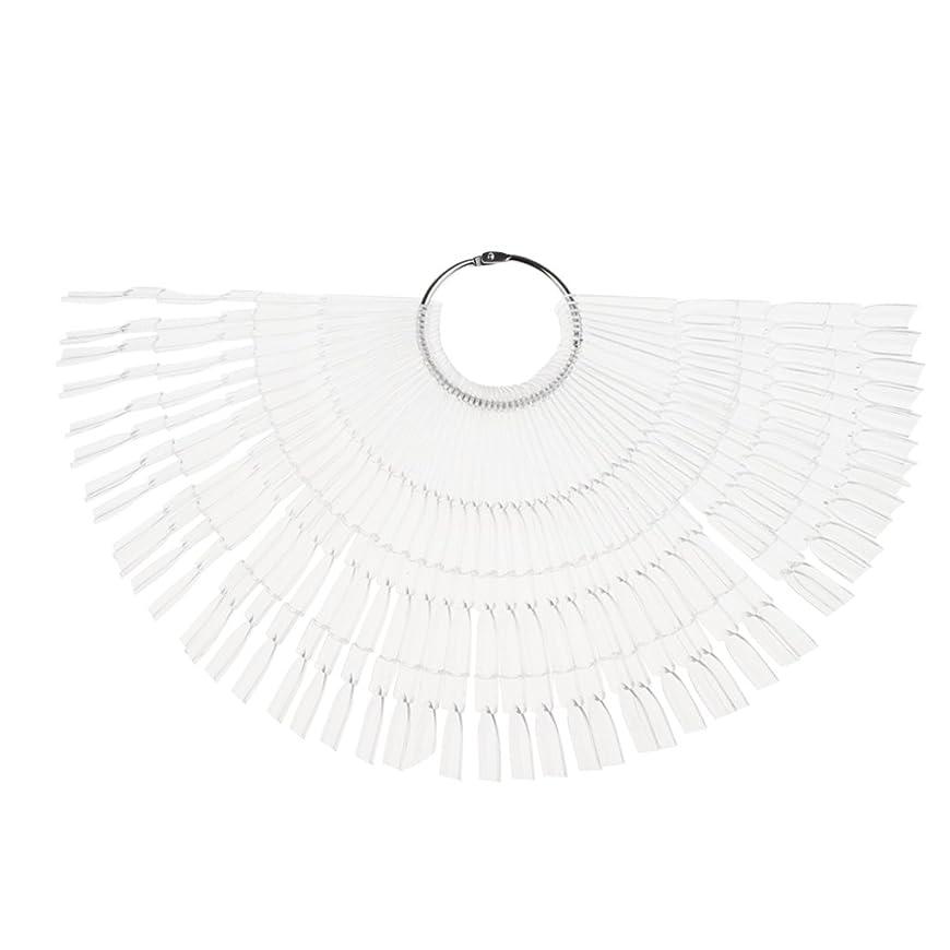 支援粘液美しいPerfk ネイルアート カラー表示チャート 約50個の扇形ヒント カラーディスプレイパレット マニキュア モデル 2タイプ選べる - クリア