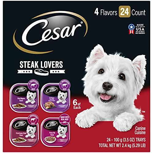 CESAR Steak Lover's Adult Wet Dog Food Variety...