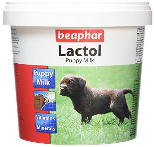 Beaphar Lactol Lait pour Chiot - 1 kg