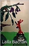 The Fox and the Grapes Phaksa ra aṅgūra  : Children's Picture Book English-Nepali (Bilingual Edition)