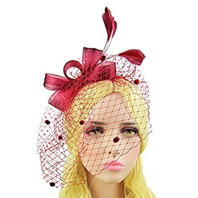 HowYouth Bowknot Feather Mesh Fascinator Headband with Veil Clip for Wedding/Cocktail Party/Tea Party/Ladies Day