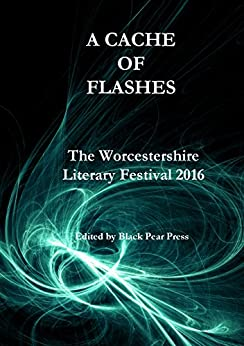 A Cache Of Flashes by [Contributors, Black Pear Press]