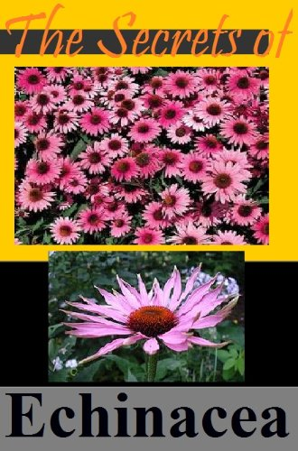 The Secrets of Echinacea - When You Need...