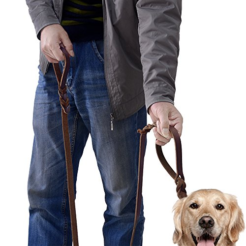 Wellbro Double Handle Leather Dog Leash