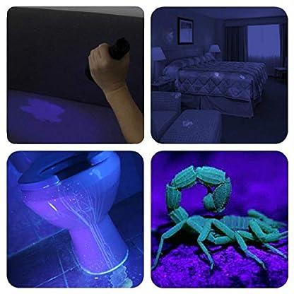 Vansky UV Torch 21 LEDs, UV Flashlight Black Light for Pet Urine Detection, Blacklight Detector for Dog Urine, Pet Stains, Bed Bug on Carpet/Rugs【3 x AAA Batteries Included】 2