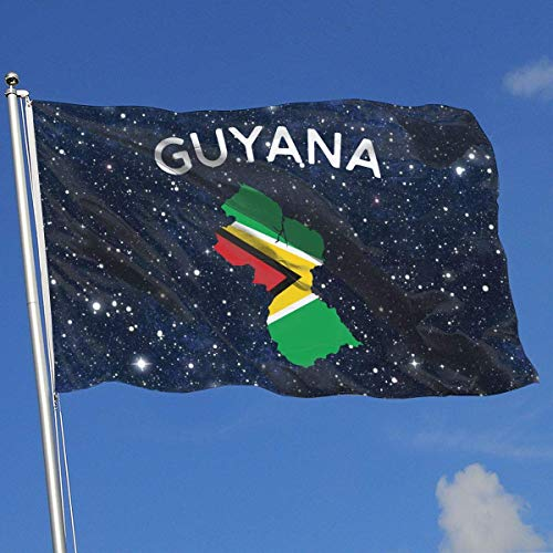 ShiHaiYunBai Flagge/Fahne, Outdoor/Home Garden Flag Guyana 100% Polyester Single Layer Translucent Flags (3 X 5 Foot)