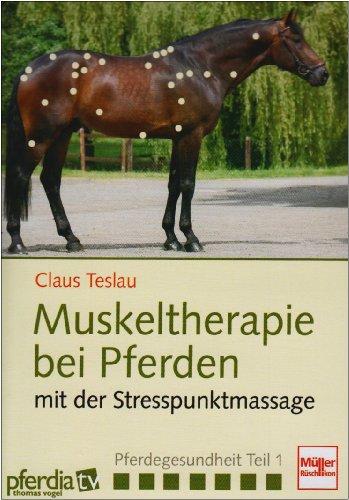 Muskeltherapie bei Pferden mit der Stresspunktmassage