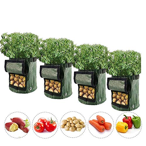 bottlewise 4Pcs Plant Grow Bags 10 Gallon Potato Planting Bag with Visualized Window and Handle Breathable Gardening Vegetable Pots Planter Container for Potato Carrot Tomato (10 Gallon)