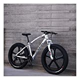 YCHBOS 26 Pulgadas Fat Tire Bike Bicicleta de Montaña para Adultos, 24 Velocidad Beach Snow Cruiser Hombres y Mujeres, Bicis Montaña con Doble Freno de Disco, Suspensión DelanteraC