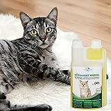 Geruchsneutralisierer Spray für Katzen – natürlicher Katzenurin Entferner – gegen Katzenklo Geruch - 9
