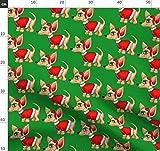 Verspielt, Rot Und Grün, Weihnachten, Chihuahua, Hund,