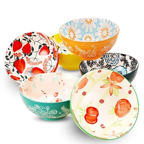 DeeCoo Porcelain Bowls Set (18-Ounce, 6-Piece) - Bowls for Cereal, Soup, Salad, Pasta, Fruit, Ice Cream Bowls Service - Microwave and Dishwasher Safe, Assorted Designs
