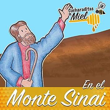 En el Monte Sinaí