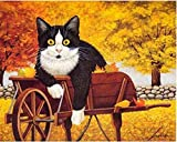 LKAZLL Oil Painting Kits DIY Paint by Numbers Adult Canvas Home Decoration Art Wall Gift Black cat Wooden car 16x20 inch