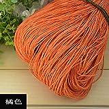 Hilo de Rafia de Verano Crochet Hilos de Paja Naturales Artesanías para Bricolaje Sombrero de Tejer Bolso Monedero Cesta Material de ratán Color 500g, 09
