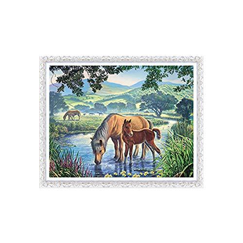 Sunnay Diamond Painting set, paard een dier, 5D diamant painting set volledige borduurwerk grote afbeeldingen DIY diamonds schilderwerk, 30x40cm / 11,8