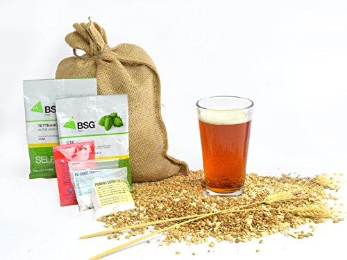 1 Gallon Home Brewing Homebrew Recipe Kit, The All Hopped Up Amber Ale, 6.2%