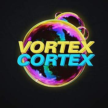 Vortex Cortex