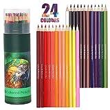 Lápices de colores, 24 lápices de colores profesionales, lápices de dibujo, juego de lápices de artista, sin cera, ideal para dibujar, hacer garabatos, pintar y escribir
