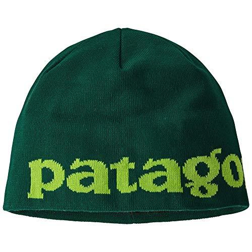 Patagonia Berretto Beanie Hat Mod. 28860 Verde