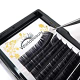 Professional Classic Eyelash Extensions C Curl 0.15mm 14mm Silk Individual Natural Black Faux Mink Lash Extensions Suppliers for Salon Use
