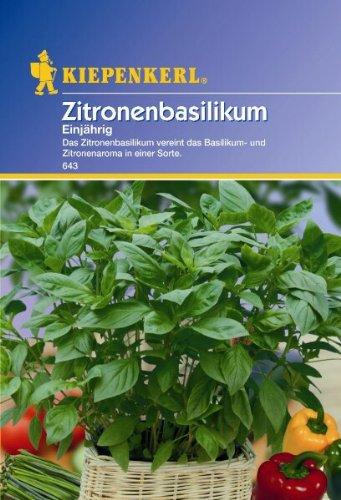 Citroenbasilicum eenjarig