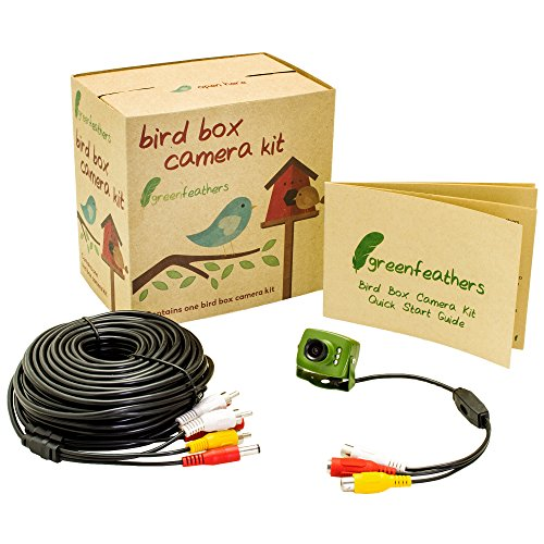 Green Feathers 700TVL verdrahtete Vogelbox Kamera mit Audio, Nachtsicht und 20m AV Kabel - Perfekte Nest Box Pack, Vogel Haus Kit, RCA, 940nm Invisible Infrarot, Garten Wildlife Kamera