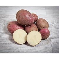 3 kg. Patata Roja / Especial para Guisar y Cocer - Selección Gourmet