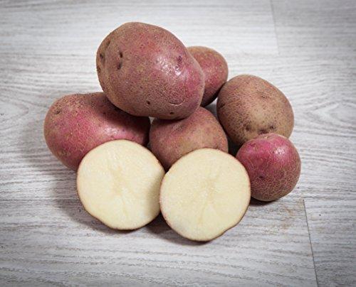13 kg. Patata Roja / Especial para Guisar y Cocer