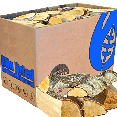 EcoBlaze Boxed Kiln Dried Firewood - Premium 25cm Hardwood Logs Dried Under 20% - Fireplace, Stoves,...