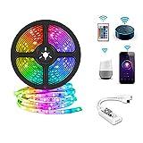 Luces de tira LED 300LEDs/5m 5050 RGBW IP65 Kit de luz de cinta flexible a prueba de agua con control remoto IR de 24 teclas y...