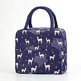 Berrd Bolsa de almuerzo con aislamiento, bolsa de asas con rayas cálidas, bolsa de almuerzo para comida de picnic, para...