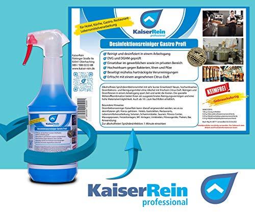Desinfektionsreiniger Wellness/Spa 1L zur Reinigung und gleichzeitigen Desinfektion zur Reinigung und Desinfektion besonders für Solarium Sauna-, Yogamatten-, Fitnessgeräte-, Massageliegenreiniger - 3