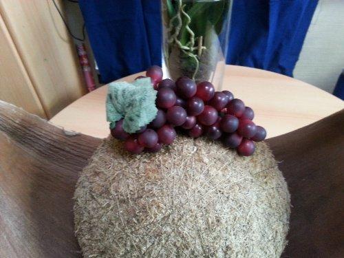 Weintraubenrebe blau mit Blätter Künstliches Obst