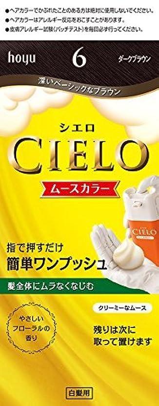 カタログマントルマーキングホーユー シエロ ムースカラー 6 (ダークブラウン) ×6個