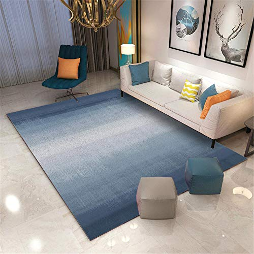 RUGMRZ Rugs Living Room Large blue Salon carpet blue fuzzy minimalist pattern durable carpet anti-mite Outside Rug Garden 140X200CM Rugs Small 4ft 7.1''X6ft 6.7''