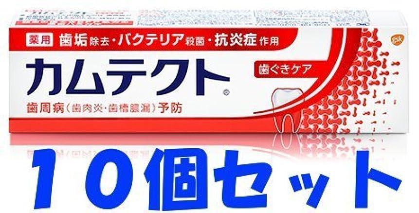 普通に弾薬繁殖【10個セット】カムテクト 歯ぐきケア 115g