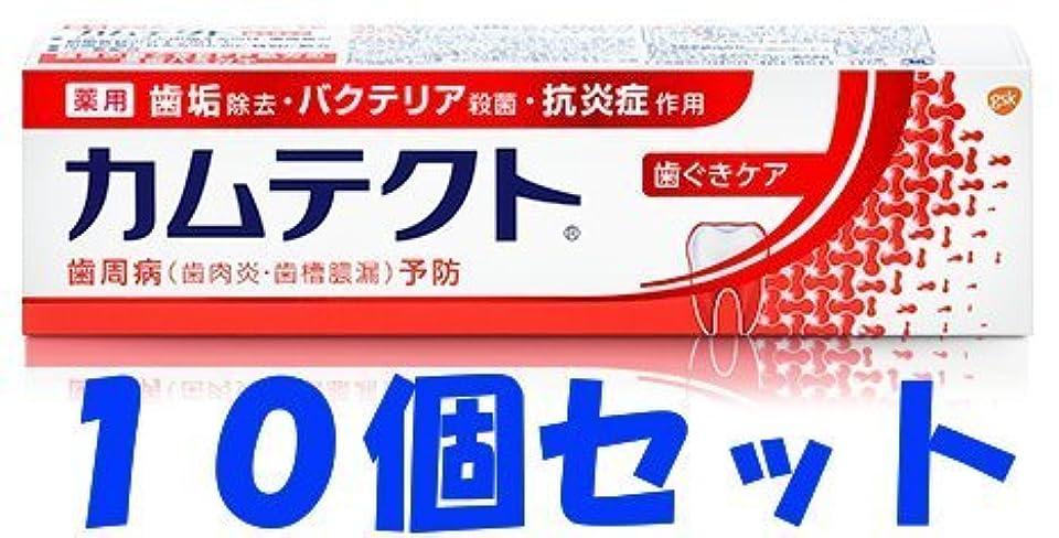 合図入植者ピニオン【10個セット】カムテクト 歯ぐきケア 115g